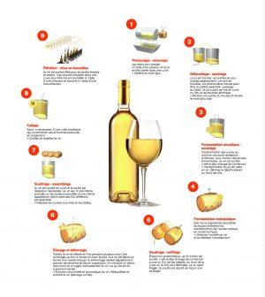 fabrication vin blanc
